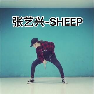 #张艺兴sheep舞#真的是最赶的一次,拍之前还不会,边练边拍,好在我对男生的舞天生敏感哈哈哈哈,耍帅是没在怕的!小绵羊这个歌和#舞蹈#可以说是太带感了!!
