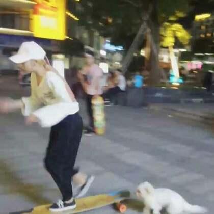 #运动##萌宠##长板女孩#一只喜欢板的dog🐶,每次回家都会带它出来玩板,边遛狗边玩板!