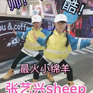 #双胎姐妹欢欢乐乐#(六岁十一个月)姐妹俩凑热闹#有戏#最火#张艺兴sheep舞#,三个字:帅酷火✌✌