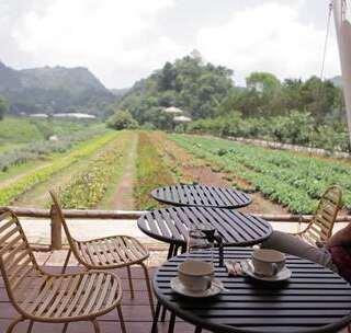 妹子坐在泰国农村露天咖啡馆玩无人机, 航拍到让人难忘的风景#我要上热门##旅游##泰国#