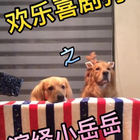 【神金汪美拍】乐宝和胖纸这组辣眼的CP又来啦~...