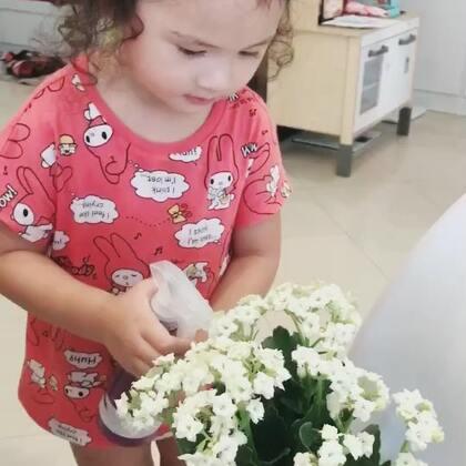 给momo买了盆花,她每天都要自己浇水☺