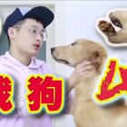 《战狗4》谢谢@super动次 #热门##搞笑#