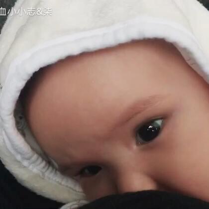 #宝宝##吃秀##荷兰混血小小志&柒#奶柒奶柒奶期到啦... ...
