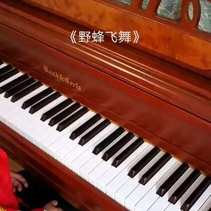 天爱六岁零一个月演奏里姆斯基-科萨科夫《野蜂飞舞》,拉赫玛尼诺夫改编。这首曲子已经被弹得烂大街了,但其实要弹好是很不容易的。#音乐##钢琴##热门#@美拍小助手