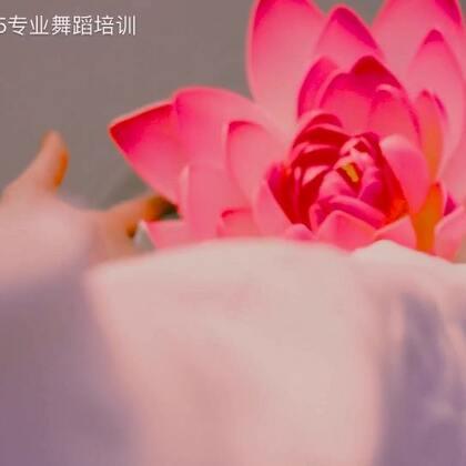 #舞蹈#郑州一起舞文化传播 华子@华华175 、惠子@175惠子 编舞《放下》弘扬佛教文化 听声知禅意,放下识菩提💕@舞蹈频道官方账号