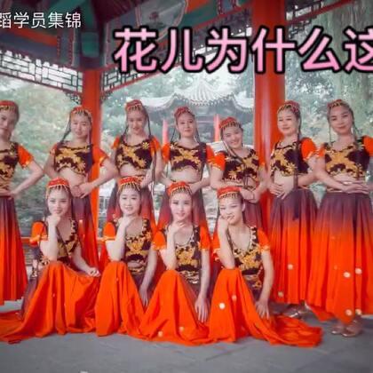 姑娘们娇羞含笑,舞步轻快,美的不要不要哒😍#单色舞蹈#《花儿为什么这样红》带你感受雨中#中国舞#的浪漫唯美🌹❤➕微信danse68一起走进#民族舞#的世界~