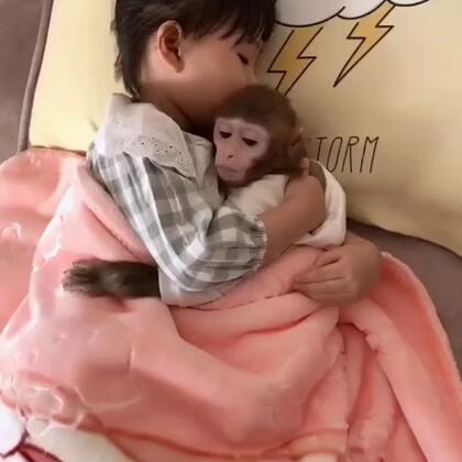 就是宠着馨#宝宝##宠物#@美拍小助手