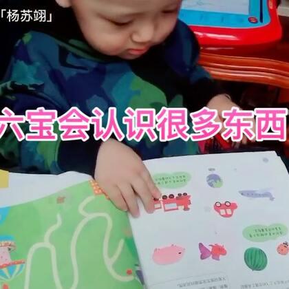 #宝宝#六宝已经认识很多东西啦,看自己这段视频的时候还给自己鼓掌👏🏻哈哈哈!笑死了,没有拍下来。