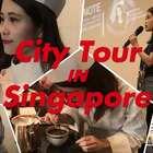神奇动物在哪里?我的新加坡奇异之旅。😊#搞笑#