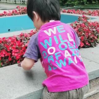 刚学走路那会儿#宝宝##宝宝成长日记##小小Andy zhou#2017.5.15