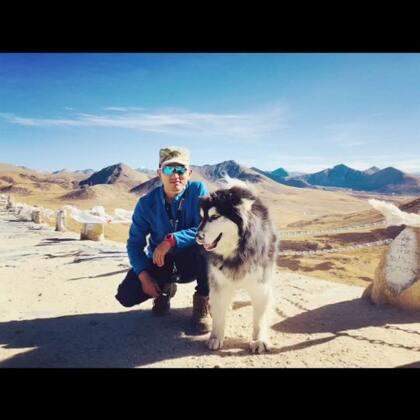 再次上路,将历时八天,徒步四天,穿越世界三大冰川之一,来古冰川!作为一只雪橇犬,伯爵应该很期待吧!