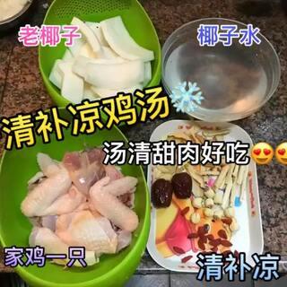 ❄️这是一道很清甜滋润的汤水 🐔是重点 鸡和老椰子煮一起就是独特的香 骨头替代不了 😚寒冬来一碗吧👋#热门##广东汤水##美食#