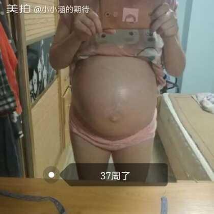 #孕妈妈日记#