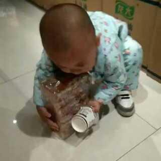 #宝宝#🍉#吃秀##夏天的日常##小吃货#贪心又会过的宝宝,吃完都不舍得扔