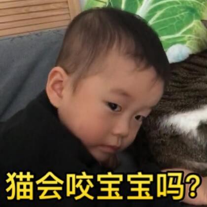 总有人担心地问家里有宝宝又有猫会不会不安全?猫会不会去咬宝宝?这个视频给大家看看真实状况是怎样的#宝宝##宠物##喵星人#