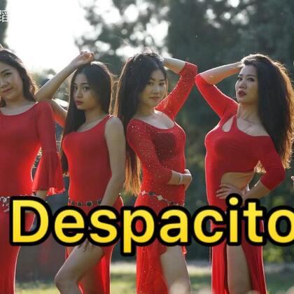 西班牙风情#despacito#与肚皮舞的碰撞融合,梦梦老师@单色舞蹈-周梦导师 原创编舞,让肚皮舞导师团带你飞!#十万支创意舞#,想咨询舞蹈吗,➕微信danse112吧~