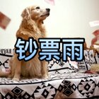 #重庆话萌宠配音#之【我的愿望】,要是你的生活中突然出现一只能实现愿望的蜡烛精,你们会许什么样的愿望呢?