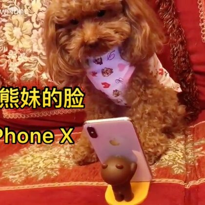 #狗狗脸解锁iPhone X##熊妹购物狂##热门#@美拍小助手