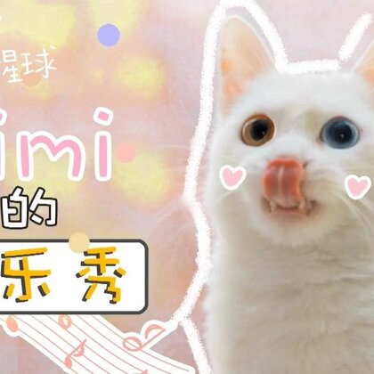 timi:我的首场音乐秀,你们会不会来为我打call呀?! #我们养猫吧##宠物#✨关注并转赞评,下周抽两位送出猫猫毛毯抱枕哦✨