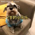 我爱她,么么哒!#宠物##狗狗##汪星人#@美拍小助手