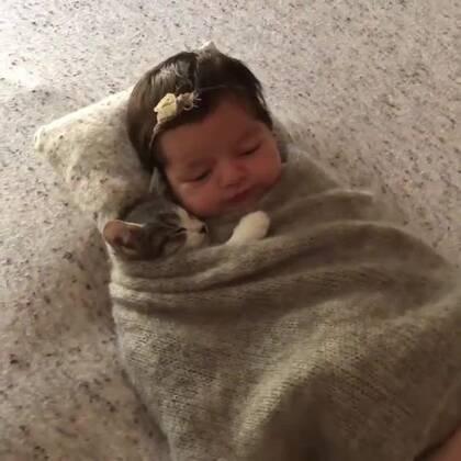 一喵一baby,晚安#宠物##宝宝#