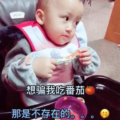 #宝宝#想骗我吃番茄?🍅