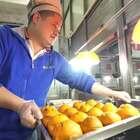 """高校食堂再次惊现黑暗料理""""橙市套路深"""",你绝对猜不到是什么#二更视频##美食##我要上热门#"""