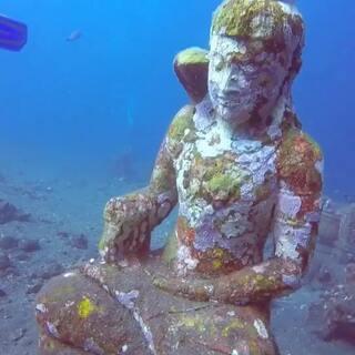 一座沉入海底的佛像#潜水##潜水摄影##旅行#