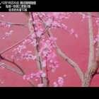 《花落宫廷错流年》插曲《竹马》MV 来袭!青梅竹马心碎恋