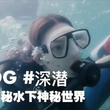 VLOG | 泰国普吉岛的深潜,来自深海的秘密,越潜越上瘾,开启不一样的眼界#vlog##深潜##泰国普吉岛#