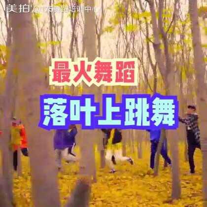 #十万支创意舞#最火的一个舞蹈片段🔥🔥🔥#郑州175舞蹈培训#这个冬天的一缕温暖🎄很难再找到这样的场景了🍂@175舞蹈培训中心+话题#落叶上跳舞# 即可有机会获得175定制礼物🎁元旦当天抽三位❤❤❤幸运的你,一定不会错过的