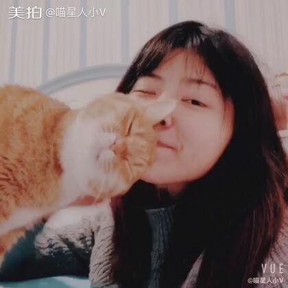 猫究竟有多听话?喵星人会有多黏人?恐怕只有养猫的人才知道啦!比心心,我有一只听话又粘人的小猫咪⸜(´ ˘ `∗)⸝ #宠物##喵星人##日常吸猫#