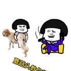 问下,你家养狗了没有?多大了?在评论里回答!#宠物##精选##学韩语#🌚🌚🌚