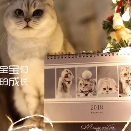 带你一起回顾这些年暖暖的记忆😊然后开始我们的圣诞抽奖活动🎉本视频评转赞抽10位送18年原创台历一本🎈赶紧动起来 20号开奖 争取让你们圣诞节前收到#宠物##圣诞礼物#https://college.meipai.com/welfare/3dc6273b49025dcf