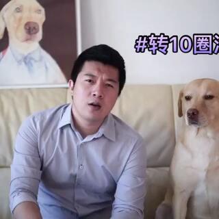 """#小布的日常生活##转10圈涂口红# """"真的好像喝了两斤白酒 完全断片"""" #宠物#"""