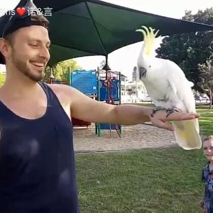 出去散步碰到一只鹦鹉,太可爱了😀