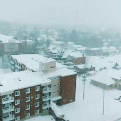 今天下了很大的雪,世界一片白色,圣诞🎅快乐!!!#美拍陪你过圣诞##加拿大美景##精选#