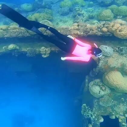 感谢带我飞,带我看二战沉船[爱心]帕劳旅游体验官Lina#帕劳旅游##自由潜水##🍉运动#