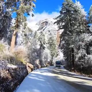 穿越贡嘎雪山原始森林—美摄帅哥出品🏔️❄️貢嘎山的冰雪世界是每一位旅游达人向往的地方,冬日的贡嘎山一片白雪皑皑、银装素裹,天幕下的雪峰云浮瑶玉色,皓首碧穹巍。清晨迎着朝阳,从海拔3000米的营地,穿越茫茫的原始森林。满目玉树琼枝,耳畔雪水潺潺,宁静而惬意,圣洁而忘我!#日志#