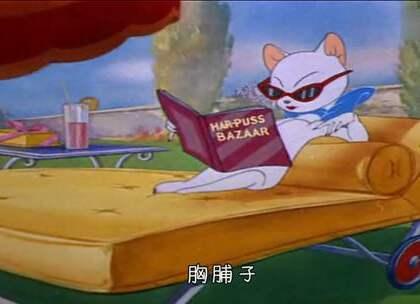 年度奇葩恋爱现场,老鼠给猫助力追女友,动物世界乱了#我要上热门##2017再见#