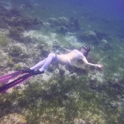 2018和我一起海外水下拍摄去,照片视频都不会少#水下摄影##海岛旅拍##旅拍#