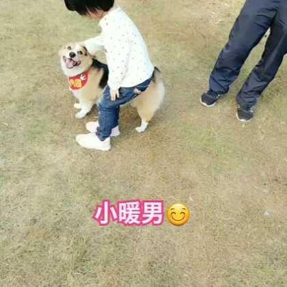 小暖男☺#宠物##精选##肉圆小短腿#