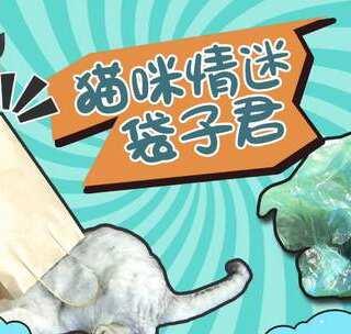 #宠物#原来袋子才是猫咪的真爱,那我算什么,还得天天给铲屎#我要上热门##日志#