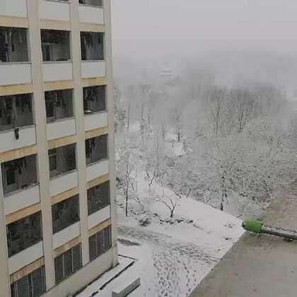 第一场雪啊~ 最近不听妈妈的话,不喝水,没想到还是上火了啊啊啊