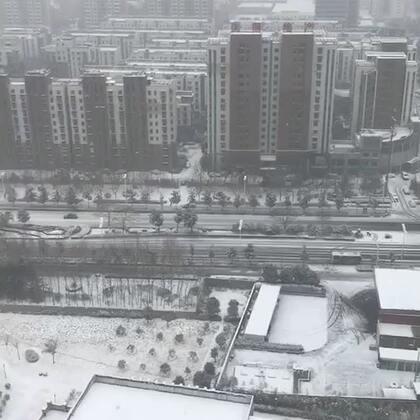 下雪了#下雪啦##你的城市下雪了吗#注意安全😁