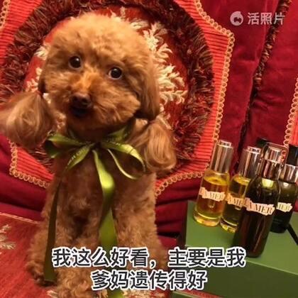 #宠物##精选##我要上热门#