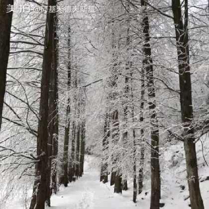 你那里下雪了吗?注意防寒欣赏美景。