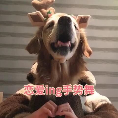 【神金汪美拍】#恋爱ing手势舞#喜欢五月天的时...