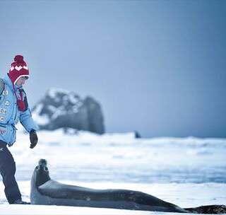 【从中国到南极有多难?赵又廷:这是我这辈子最艰难的旅程!】南极被称为是第七大陆,这里充满危险和灾难,从中国到南极有多艰难,南极之恋剧组和赵又廷或许会给你答案!#南极##赵又廷##旅行#